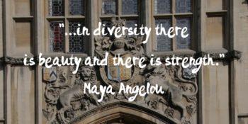 Image for blog on diversity